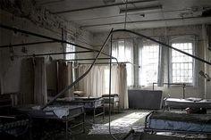Cane Asylum