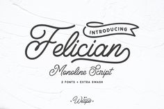 Felicia is a font with modern monoline style and very suitable for your daily use. *affiliate #fonts #font #typography #creativemarket