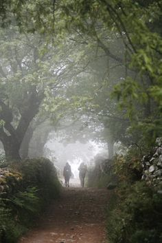 On the Camino de Santiago de Compostela in Spain.