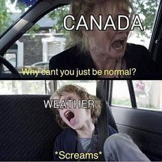 65 Of Today's Freshest Pics And Memes Dankest Memes, Funny Memes, Hilarious, Funny Canadian Memes, Funny Gifs, Canada Funny, Canada Jokes, Canada Eh, Canadian Things