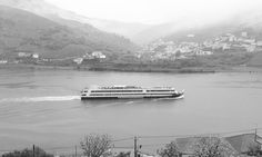 #landscape #paisagem #black #and #white #nature #houses #vineyards #trees #road #boat #douro #river #rio #in #folgosa #do #douro #portugal #ilovedouro #portugal_de_sonho #amoteportugal_ #amar_portugal #amar_norte by diana.rodrigues.sousa4