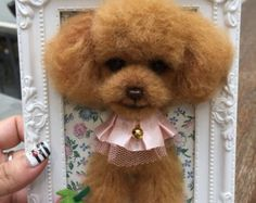 Needle wool felting puppy portrait on picture frame,III