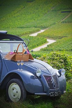 Picnic in the country. | #Honeymoons to #France http://www.pinterest.com/FLDesignerGuide/honeymoons-to-france/