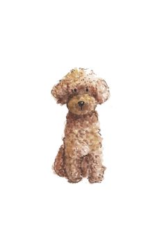Poodle Print — Marry Me in Spring Dog Illustration, Illustrations, Watercolor Illustration, Watercolor Art, Cartoon Dog, Cartoon Drawings, Animal Drawings, Poodle Drawing, Dog Paintings