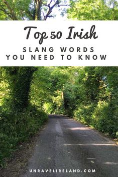 50 Irish Slang words you NEED to know - Unravel Ireland Irish Language, Need To Know, Ireland, Posts, Blog, Messages, Blogging, Irish