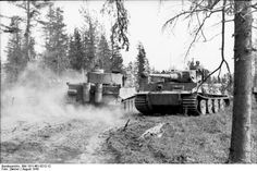 Two German Tiger I heavy tanks in a forest near Lake Ladoga northwestern Russia August 1943. Photo: Bundesarchiv Bild 101I-461-0212-12 Zwirner.