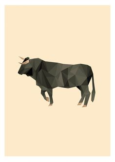 Spanish Bull Illustration