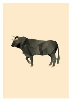 Spanish Bull Illustration