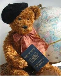 Passport Teddy bear