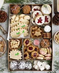 #christmascookietraygoals