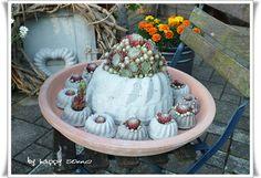 Bepflanzte Betonguglhupf  http://happy-sonne.blogspot.de/2013/06/von-hauswurz-und-beton-gugelhupf.html