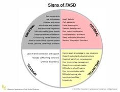 Medicine-Wheel-signs-of-FASD_Interesting post on Fetal Alcohol Syndrome as children age. https://climbingthecindercone.wordpress.com/2014/12/19/fetal-alcohol-spectrum-disorders-beyond-childhood/