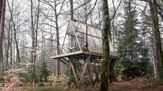 Gallery of Lendager Group Unveils Plans for Permaculture Farming and Cabin Escape in Swedish Wilderness - 3