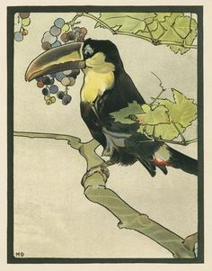 .Maurice and Edward Detmold's 'Pictures from Birdland', London, J ...
