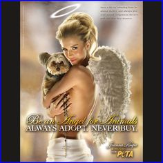 Advertise: Be an Angel for Animals