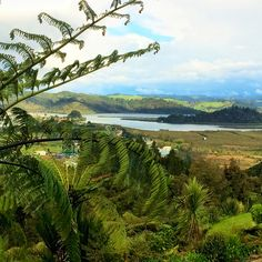 Views from the lodge Luxury Travel, New Zealand, River, Mountains, Nature, Outdoor, Outdoors, Naturaleza, Outdoor Games