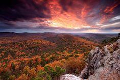 Fall Colors, Ouachita National Forest , Arkansas, USA by Laura Vu