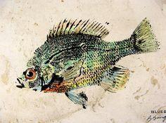 Hand colored Original Bluegill Art GYOTAKU fish by fishfanatic, $35.00