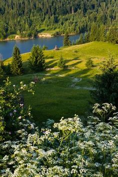 Colibita lake, Bistrita-Nasaud, Romania (By Colin Crestin), www.romaniasfriends.com