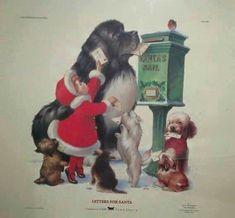 Newfie Christmas #NewfoundlandDog