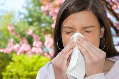 Know the signs of asthma and allergies Spring Allergies, Seasonal Allergies, Natural Treatments, Natural Cures, Natural Life, Natural Beauty, Natural Allergy Relief, Sinus Problems, Best Essential Oils