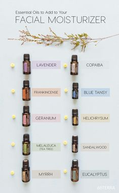 Essential oils for skincare. Oils to use on your face. Doterra essential oils to add to your face oil Essential Oils For Face, Essential Oil Uses, Essential Oil Diffuser, Blue Tansy Essential Oil, Melaleuca, Elixir Floral, Aromatherapy Oils, Doterra Essential Oils, Image Skincare