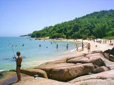 Praia da Daniela, Florianopolis
