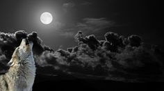 A night sky showing a full moon. The dark night and swirling clouds create a dramatic atmosphere. A night sky like this fully encapsulates Halloween. Cloud Wallpaper, Wolf Wallpaper, Dark Wallpaper, Wallpaper Backgrounds, Wallpaper Desktop, Wallpaper Pictures, Dark Backgrounds, Mobile Wallpaper, Amazing Wallpaper