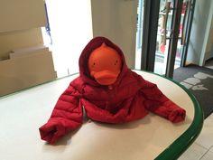 #savetheduck #abbigliamento #bambino