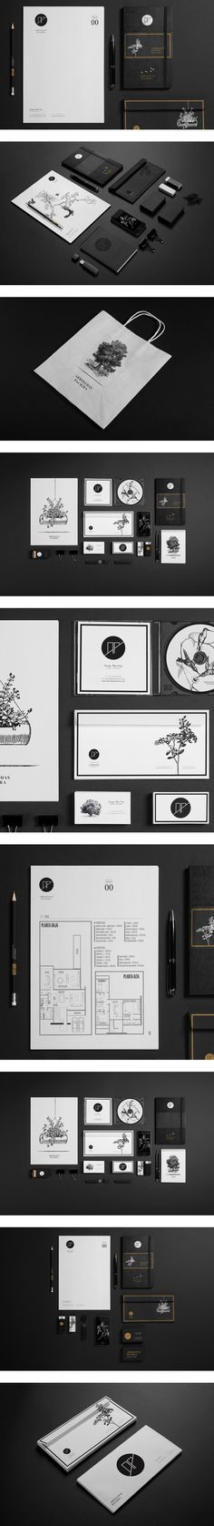AP by Diego Leyva, via Behance | #stationary #corporate #design #corporatedesign