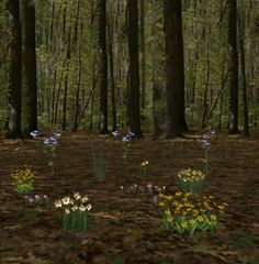 Background Tiles I made myself :: Flowers in Forest image by ohbob - Photobucket