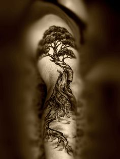 Clay's Tree Tattoo | Flickr - Photo Sharing!