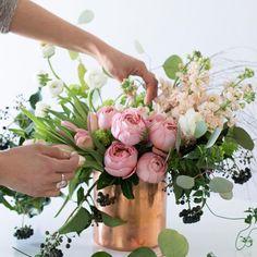 step-6-roses-peach-garden-romantic-030915