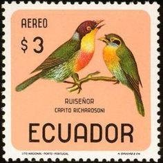 Ecuador 1966 - Ruiseñor