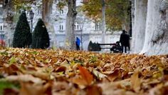 Zagreb parks change with the seasons