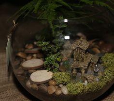 Secret Gnome garden Terrarium Tropical Terrariums, Garden Terrarium, Gnome Garden, Gnomes, Plants, Plant, Planets