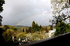 A rainbow in my neighborhood. Novato, California, Feb. 28, 2014.