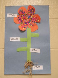 """This flower represents the """"art and science"""" category while teaching kids about nature. Children are able to use they're creativity and learn science. I will definitely advocate this into my classroom!"""