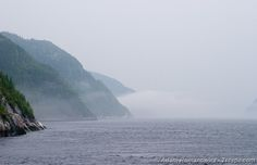 Foggy fjord in Tadoussac, Quebec