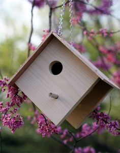 Beautiful Bird House Designs You Will Fall in Love with (20)
