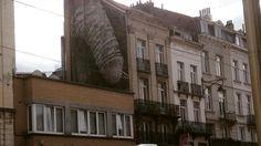 Een grote muurschildering van een penis die afgelopen weekend is aangebracht in Brusselse gemeente Sint-Gillis wordt binnenkort verwijderd. De wethouders vinden deze vorm van straatkunst te shockerend.