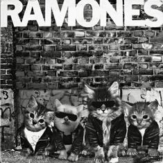 The katmones