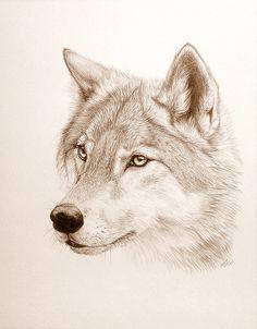 Wolf Tattoo |