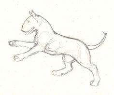 Resultado de imagen para dibujos a lapiz de perros bull terrier