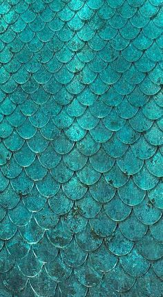 Teal scalloped tiles                                                                                                                                                                                 More
