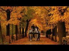 Andre Rieu - Romance Anonyme