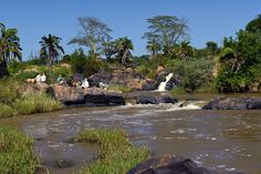 Rosie and guests having a picnic on the river after walking at Sosian, Laikipia, Kenya.