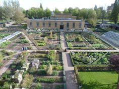 the #garden at #villaaugustus #netherlands