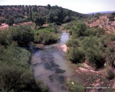 """#Jaén - #Beas de Segura - Río Guadalimar GPS 38º 17' 28"""" -2º 57' 36"""" / 38.291111, -2.960000   El río Guadalimar es un afluente del Guadalquivir, nace al pie del Cerro Almenara, en la Sierra de Alcaraz (Albacete). recibe por la derecha al Guadalmena y Guadalén. Desemboca en el Guadalquivir. En su recorrido atraviesa la Sierra de Segura."""