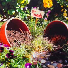 Toad Abode. A Toad will gobble up 20,000 garden pests in a year. Create it with pots, dirt, and shallow water.  FamilyFun